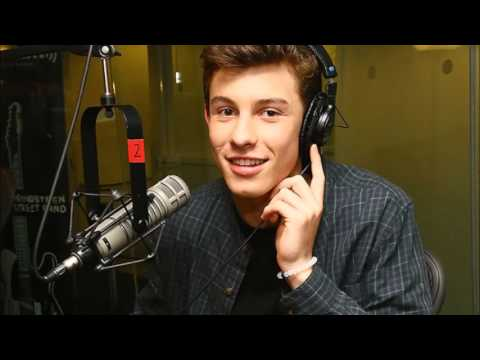 Shawn Mendes  Crazy Video