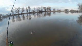 НЕОБЫКНОВЕННАЯ РЫБАЛКА НА ОКУНЯ! (видео рыбалка)!