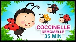 Coccinelle, demoiselle - Comptines pour les petits - Titounis