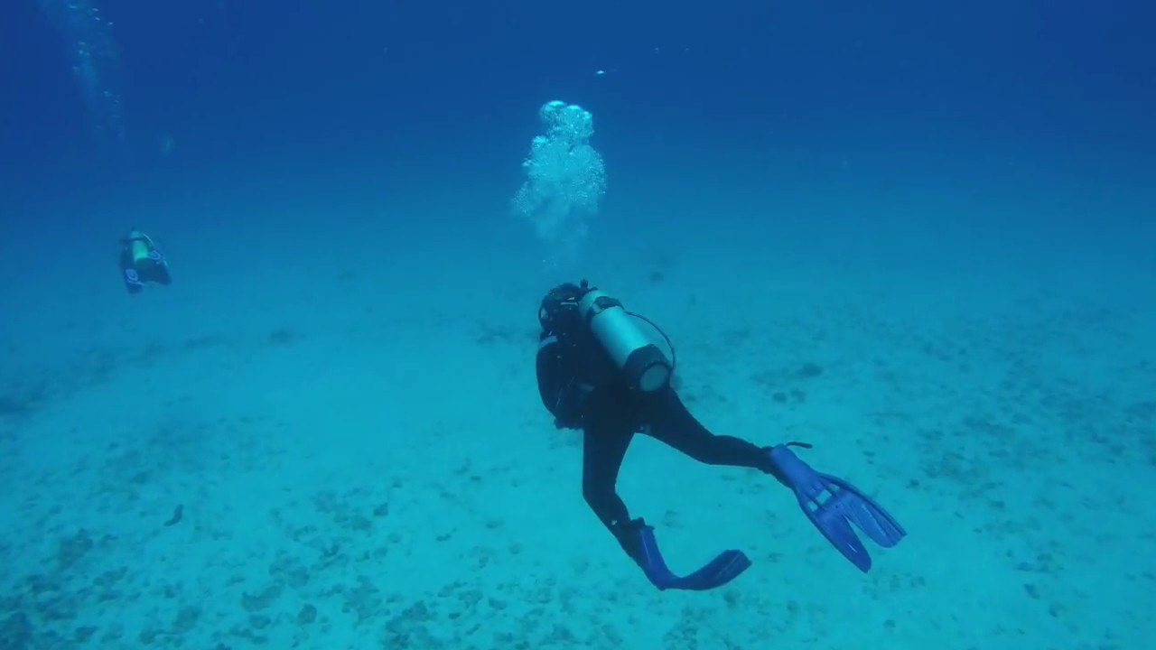 Kona Diving Company >> Diving In Kona Hawaii With The Kona Diving Company Youtube