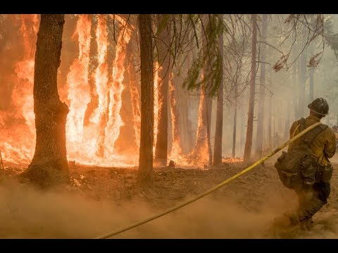 With Rise In Wildfires, Prescribed Burns May Be A Solution