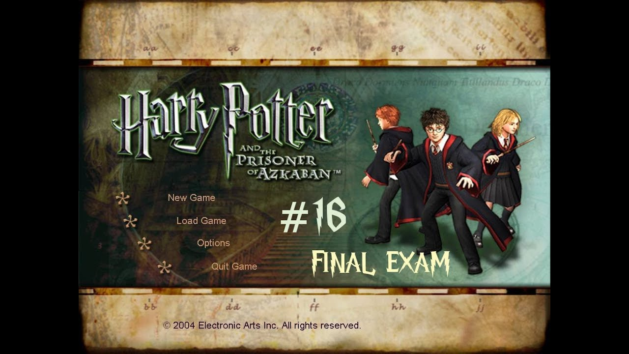 harry potter extended essay questions