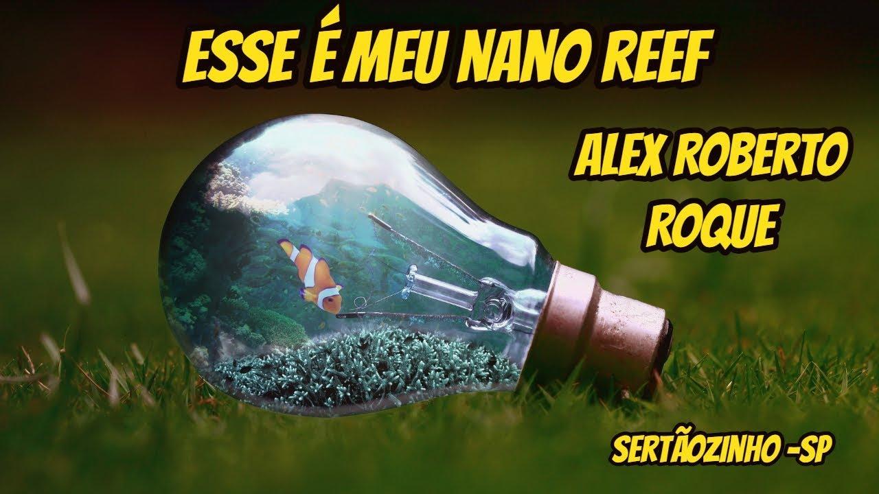 Esse é meu NANO REEF - Alex Roberto