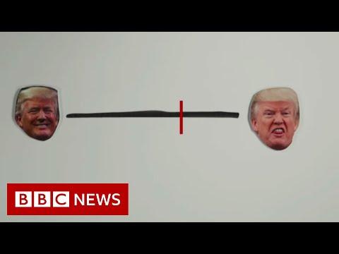 What happened this week in Trump's impeachment saga? - BBC News