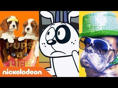 'Happy National Dog Day' 🐶   Sing-Along Music Video w/ SpongeBob, TMNT & More! | #MusicMonday