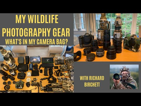 WILDLIFE  PHOTOGRAPHY EQUIPMENT | Wildlife Photography Gear In The Field