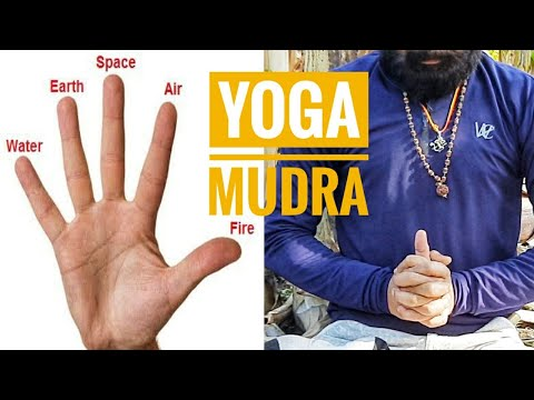 YOGA HASTA MUDRA PART 1 | Hand Gestures FOR HEALTH | YOGA WITH SHYAMI