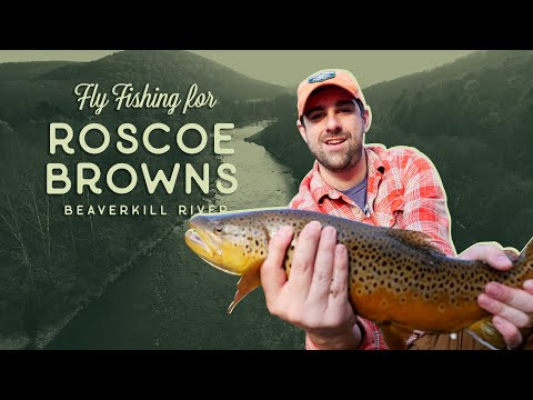 Fly Fishing For Roscoe Browns In The Beaverkill River -  Higher Elevations Adventures