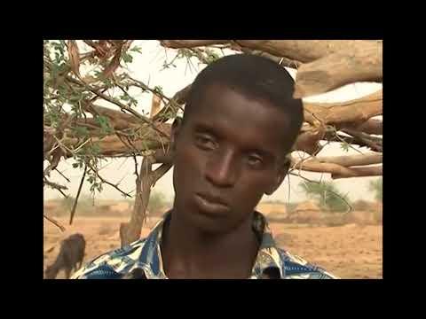 Amadou Mahamoudou SOW,  produit de Hoggo Samboweel