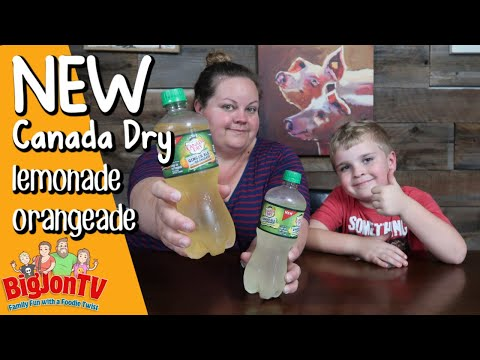New Canada Dry Ginger Ale And Lemonade & Orangeade || Taste Test Tuesday