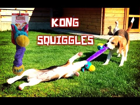 Funny Dog Toy Critics 'Louie and Marie' Episode #9 : KONG SQUIGGLES