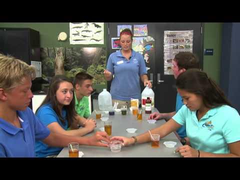 Aqua Kids 2013 03 Ocean Acidification
