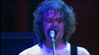The Fratellis - Country Boys & City Girls (Live at Filmore)