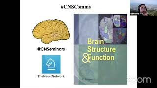 #CNScomms Day 1: Structural Connectivity of the Cerebral Cortex