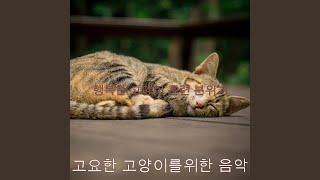 흠없는 고양이 자장가의…