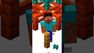 Minecraft Fence FACTS