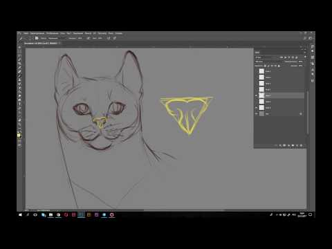 Как рисовать морду кошки