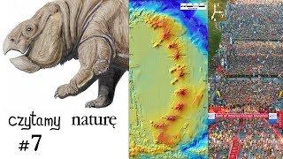 Czytamy naturę #7   Gigantyczny pra-ssak - Neon w płaszczu - Płyń z tłumem