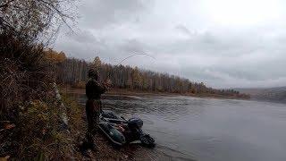 СТОЛЬКО ЛЕНКОВ я ЕЩЕ не ЛОВИЛ !!! Рыбалка на спиннинг на реках Сибири