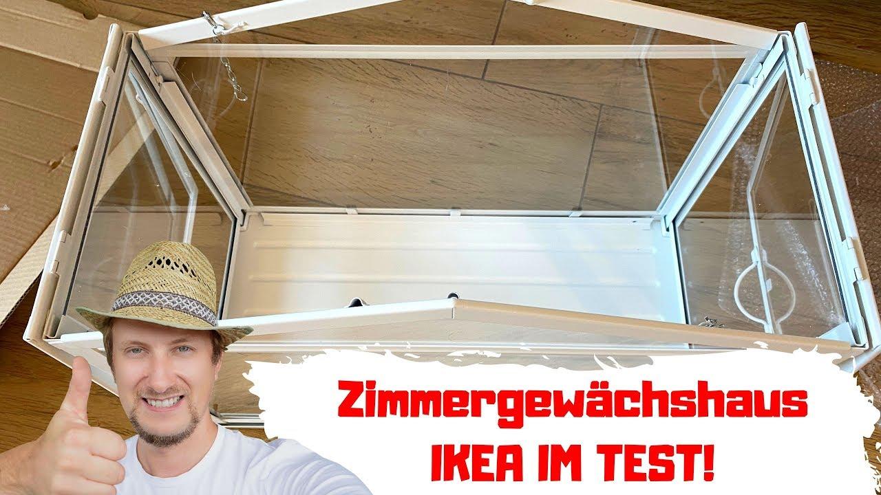 Zimmergewachshaus Ikea Erfahrung Aufbau Lohnt Sich Der Kauf Youtube