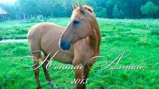 Конный поход по Горному Алтаю 2013(, 2013-08-15T11:16:10.000Z)