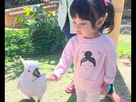 VANIA ATHABINA - Takut-takut Pegang Burung Kakak Tua
