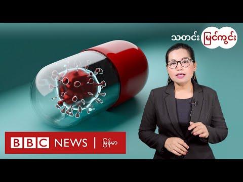 NLD အမတ်တွေဖမ်းခံရမှု ရခိုင်အင်အားစုတွေအမြင်၊ ကိုဗစ်ကုသဆေး မျှော်လင့်ချက်သီတင်းပတ် - BBC News မြန်မာ