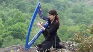 Alesia - Eluveitie - harp / harpe / 竖琴