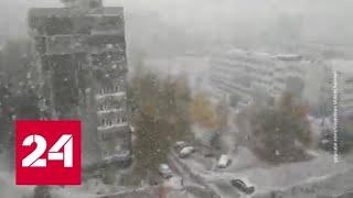 Смотреть видео Мокрый снег и сильный ветер: в России холодает - Россия 24 онлайн