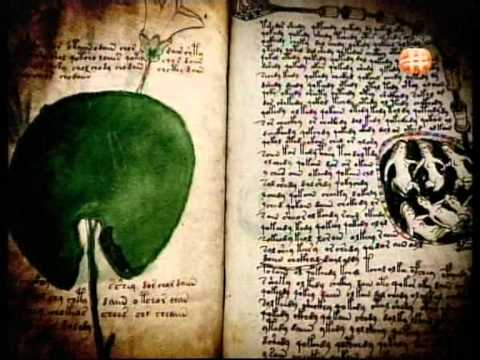 Voynich Manuscript : Mysterious book that contains many UNDECIPHERED secrets!!
