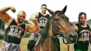 Bodybuilders VS Horses - Anabolic Engineers #3