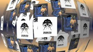 Rise And Fall - Immersion - Steve Sai Remix (Bonzai Progressive)