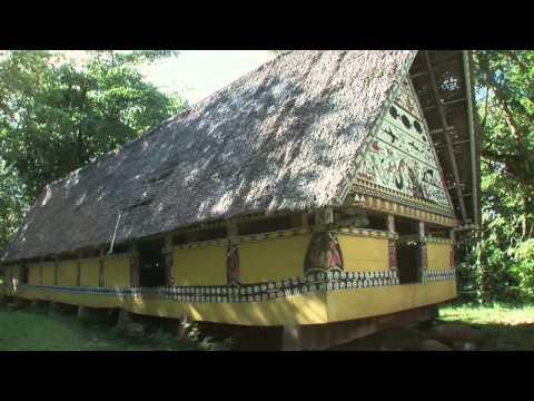 Palau 2011 Tour mit der Ocean Hunter III - Highlights