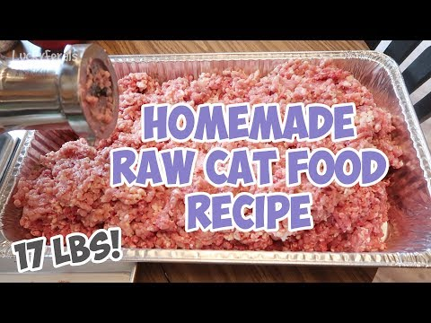 Homemade Raw Cat Food Recipe - Bulk Batch - That I've Been Feeding The Cats