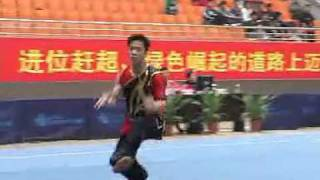 2010年全国武术套路锦标赛(传统)M22 001 男子形意拳 王武剑