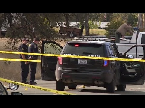 New details emerge about deadl california shooting