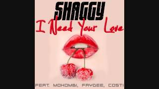 FAYDEE - I Need Your Love  ft Shaggy, Mohombi, Costi