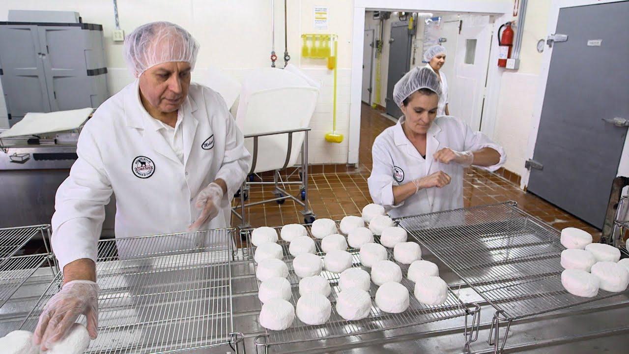 Food Factory USA 2: Comment fabrique-t-on le fromage de chèvre?