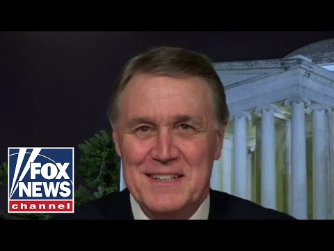 Sen. David Perdue: If we win Georgia 'we save America'