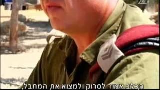 Idf Israeli Sf 'oketz' K-9 Unit Dogs Training Process | הכלבים של יחידת עוקץ