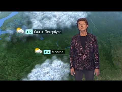 Погода сегодня, завтра, видео прогноз погоды на 4.8.2019 в России
