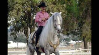 El Chapo de Sinaloa - Morenita piel canela