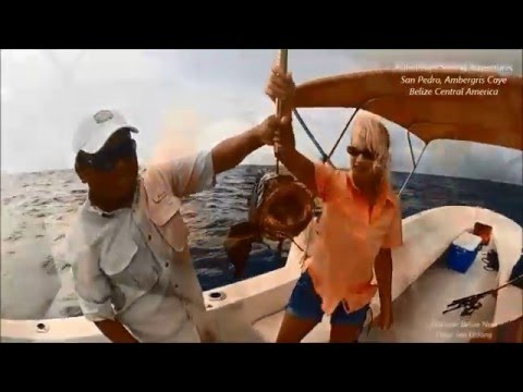 XSITE BELIZE SPORT FISHING ADVENTURES