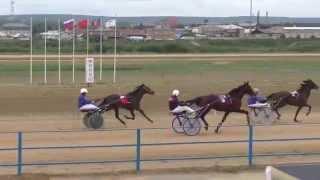 Бега-заезд для лошадей 2 лет-Емельяново 15.08.2015(Horse–Animal-racing-конь-смотреть-онлайн-скачки)
