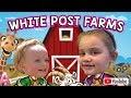 WHITE POST ANIMAL FARM / FEEDING ANIMALS / PETTING ZOO / GOAT / RING TAIL LEMUR / WHITE POST FARM