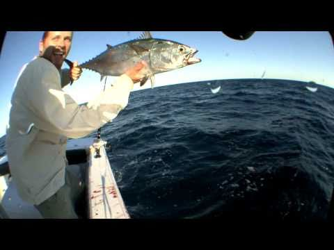 Bluefin Tuna Fishing Offshore New York