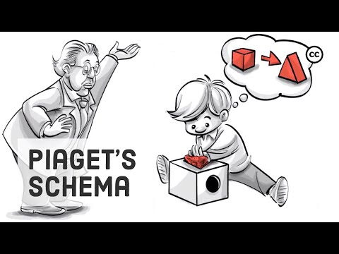 Piaget's Schema: Accommodation and Assimilation of New Information