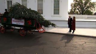 Trump e Melania recebem árvore de Natal