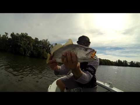 zman fishing south east queensland