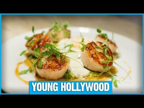 Chef Todd English's Keys to Best Dining Experience